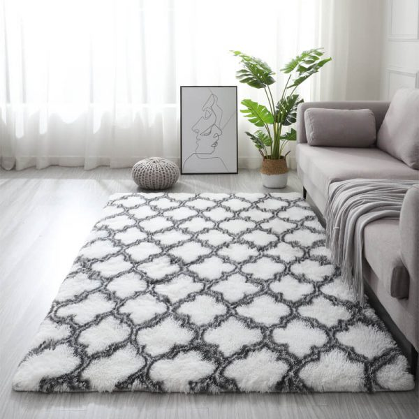 Shaggy Rug for Living Room